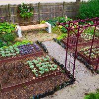 Shade Garden Design Technique Vegetable Color Blocking Shawna Desktop For Kitchen Garden Of Pc Hd Pics Colorblocking