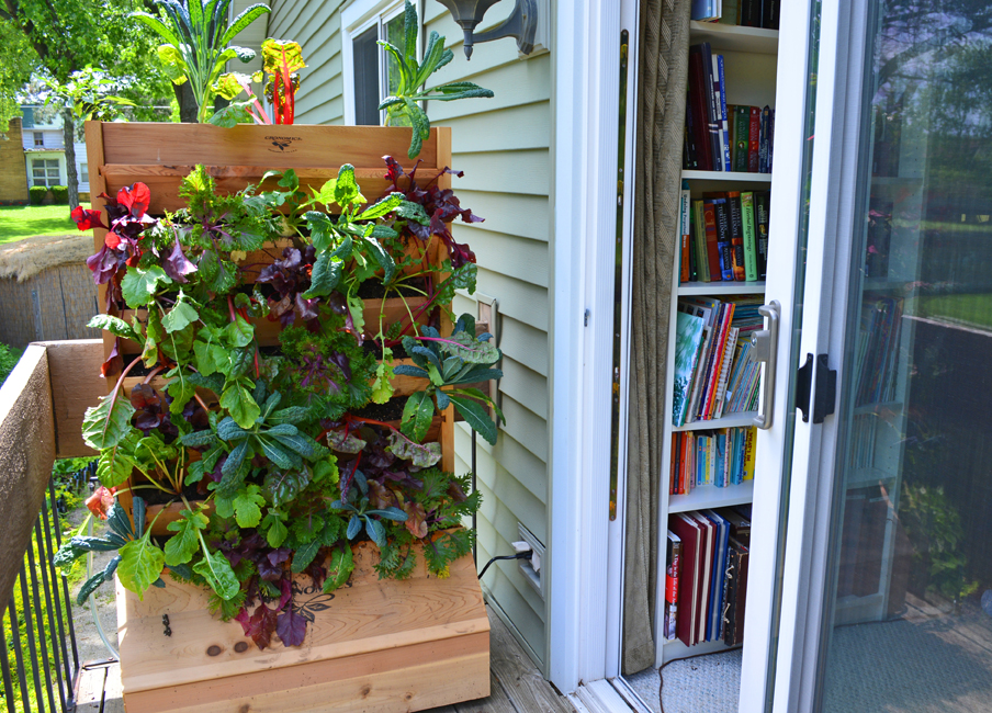 Image Result For How To Grow A Vegetable Garden On A Balcony