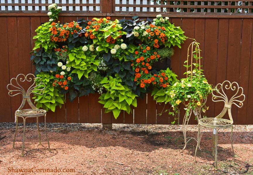 Money Saving Garden Ideas With A Living Wall Shawna Coronado