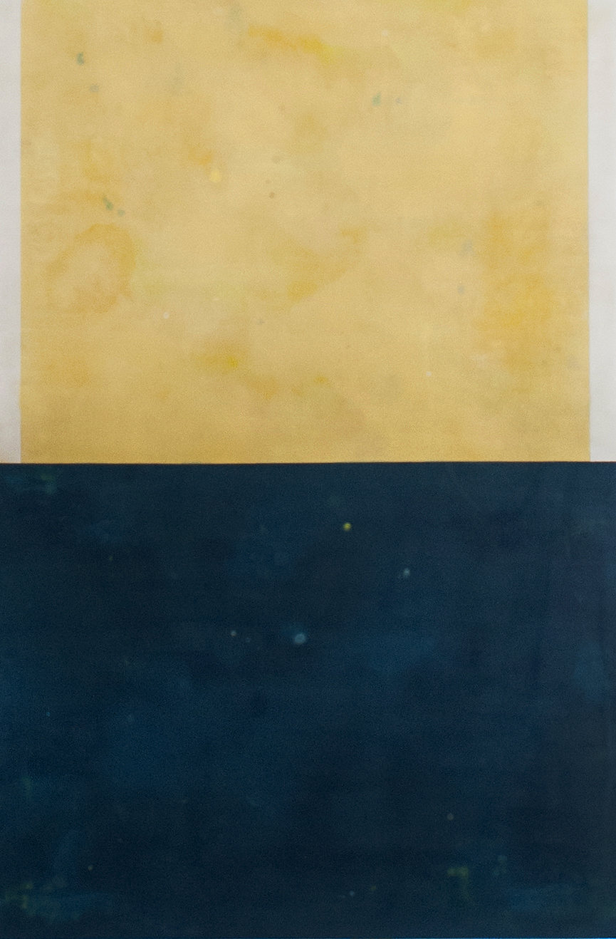 Borderline - 60 x 40 inches Encaustic on wood panel