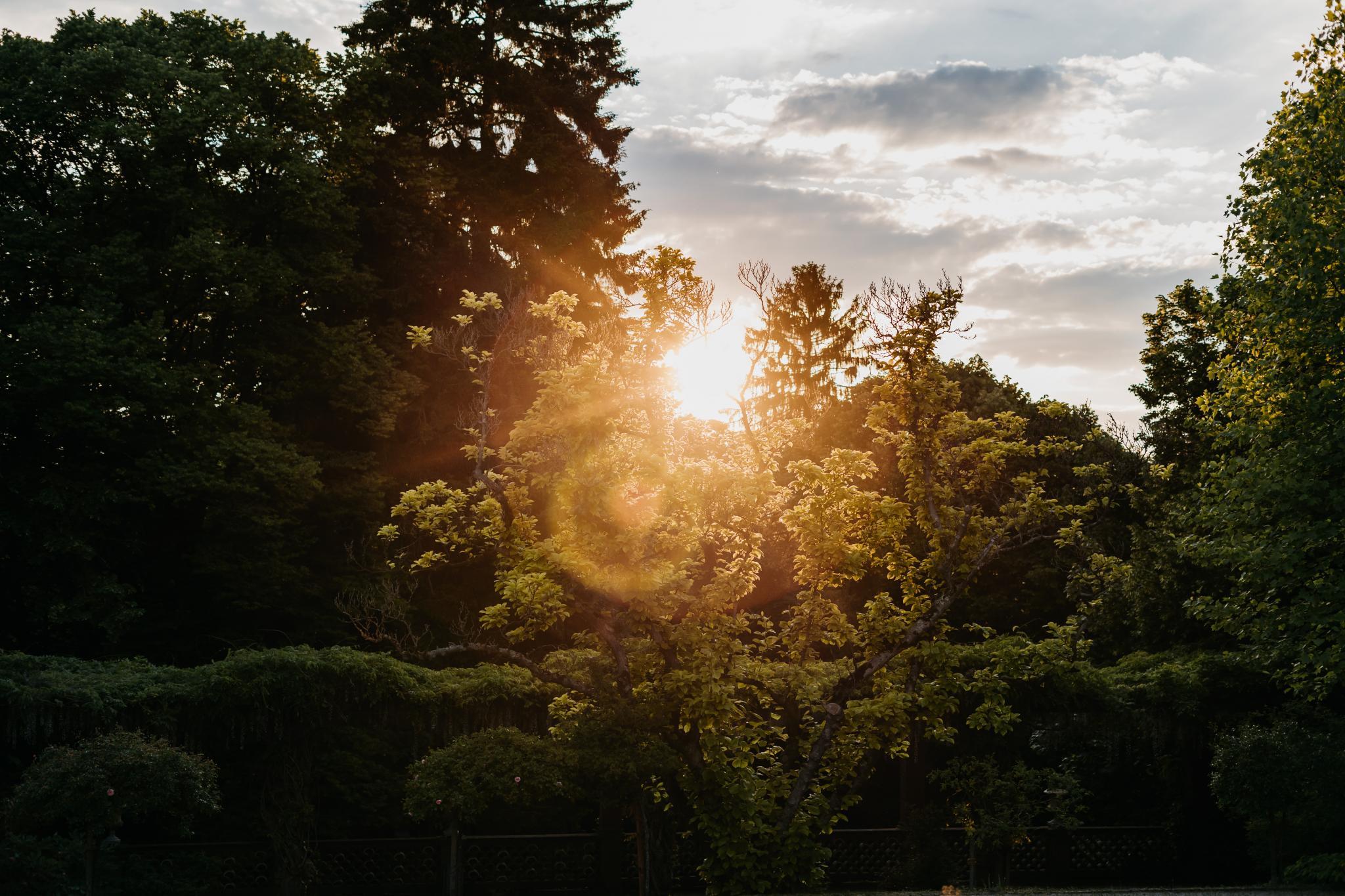 Hochzeit auf Schloss Heiligenberg Sonnenuntergang