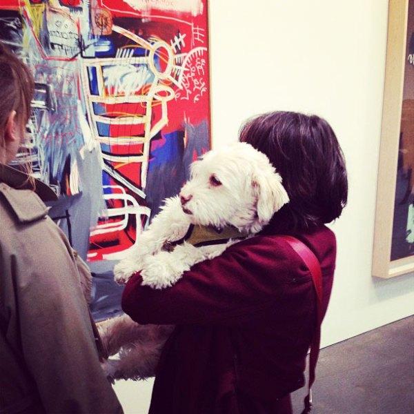 jean michel basquiat exhibition dog gagosian
