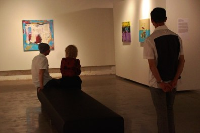 rosalux gallery shawn mcnulty exhibition