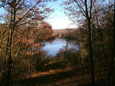 Hyland Lake Park Reserve Three Rivers District