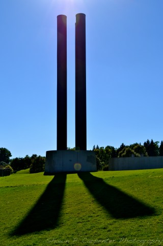 Why the long shadow