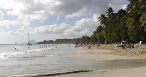 Les Plage de Salines, Martinique