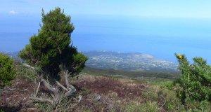 La Réunion from Above