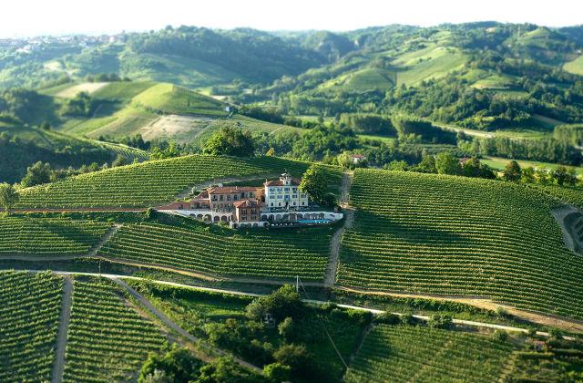 Most Scenic Vineyards For Wine Tasting ShawnVoyage