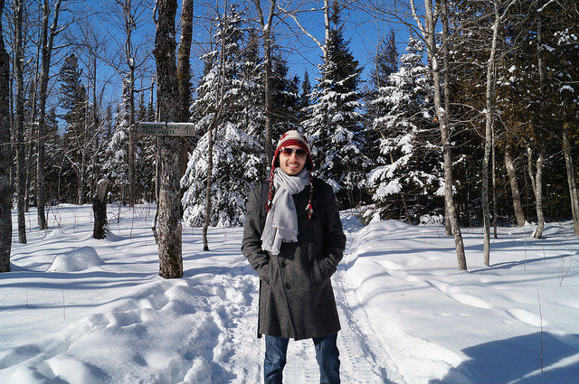 My Mini Minnesota Trip - Snow covered forest on Moose Mountain