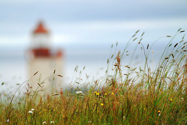 The Oddity of Saint-Pierre and Miquelon - Lighthouse