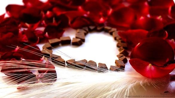 valentines day shayari 2018