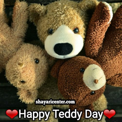 poetry of happy teddy day in hd