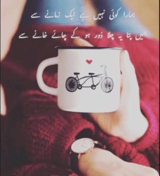 chaye shayari poetry
