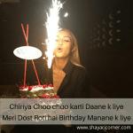 Birthday Funny Shayari Urdu (Funny Birthday Poetry Hindi)