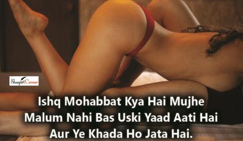 non veg shayari hindi urdu