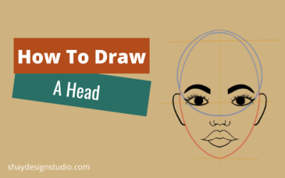 The Basic Shapes of the Head
