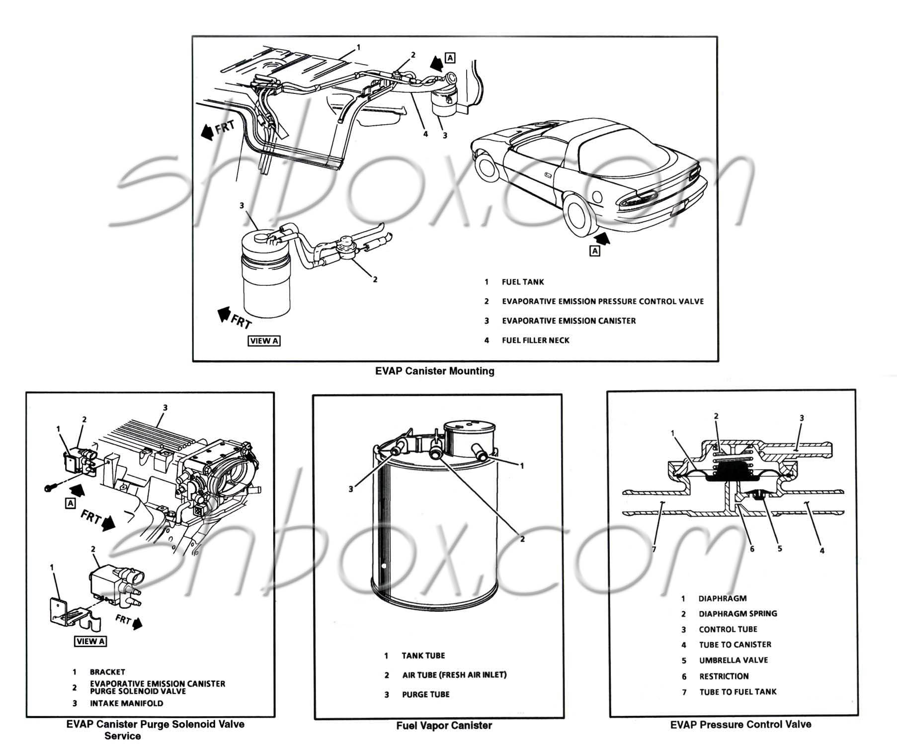 hight resolution of evap system components pre 1996