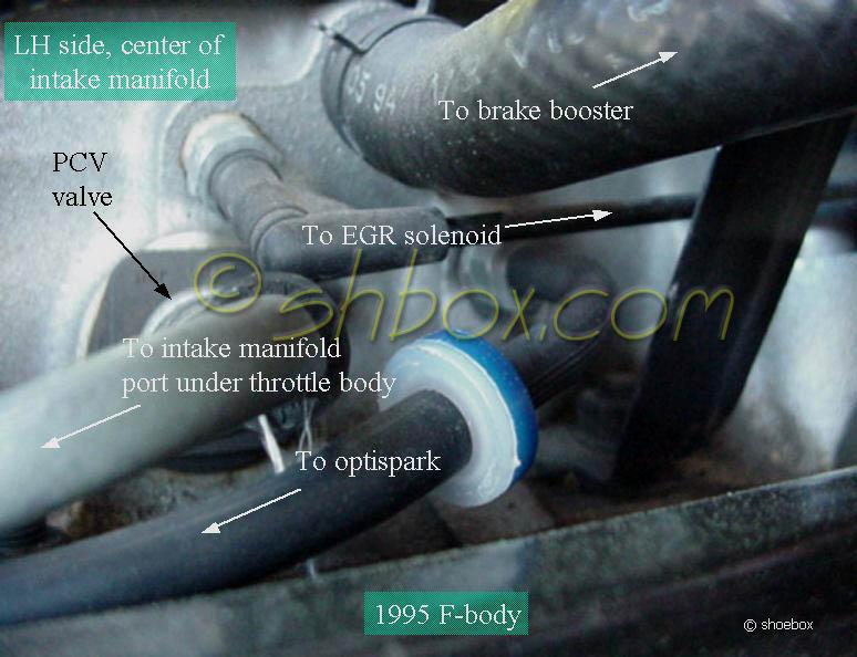 Lt1 Optispark Distributor Diagram On 94 Camaro Fuel Pump Relay