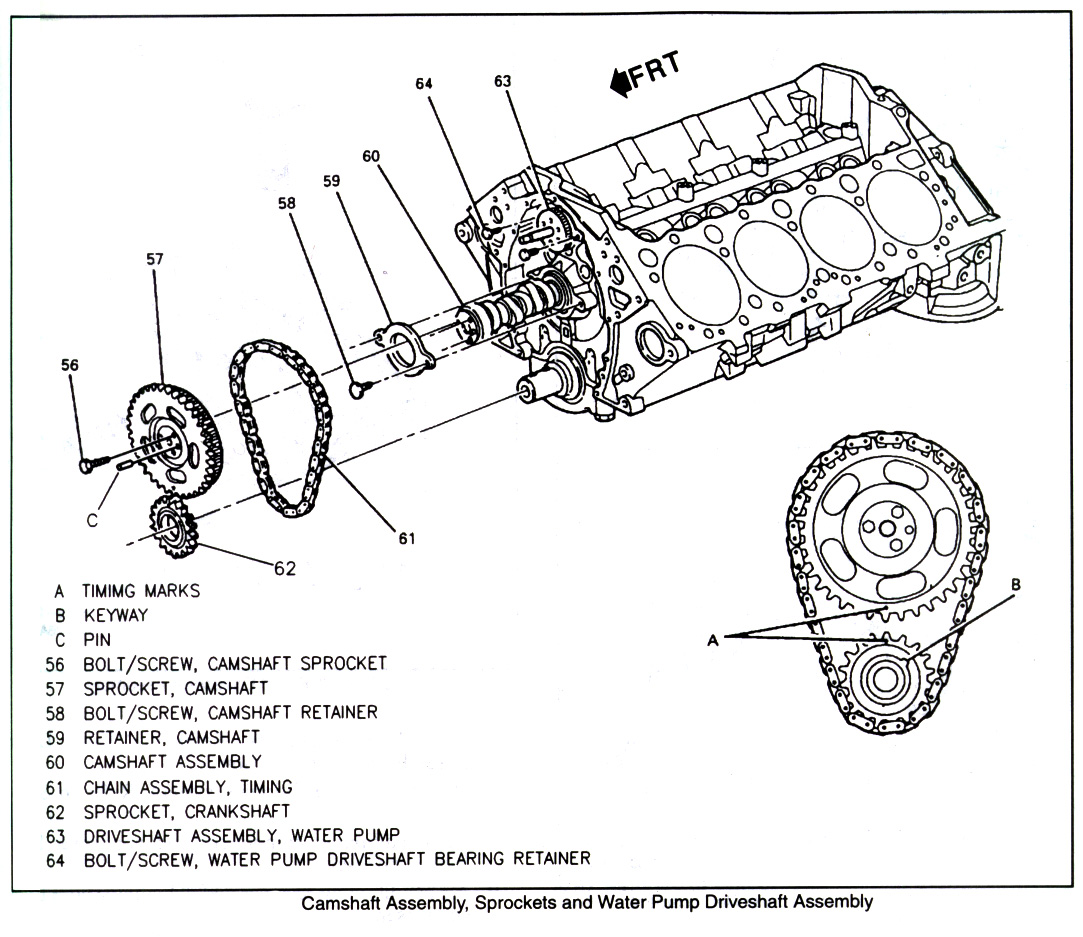 hight resolution of timing chain assembly diagram