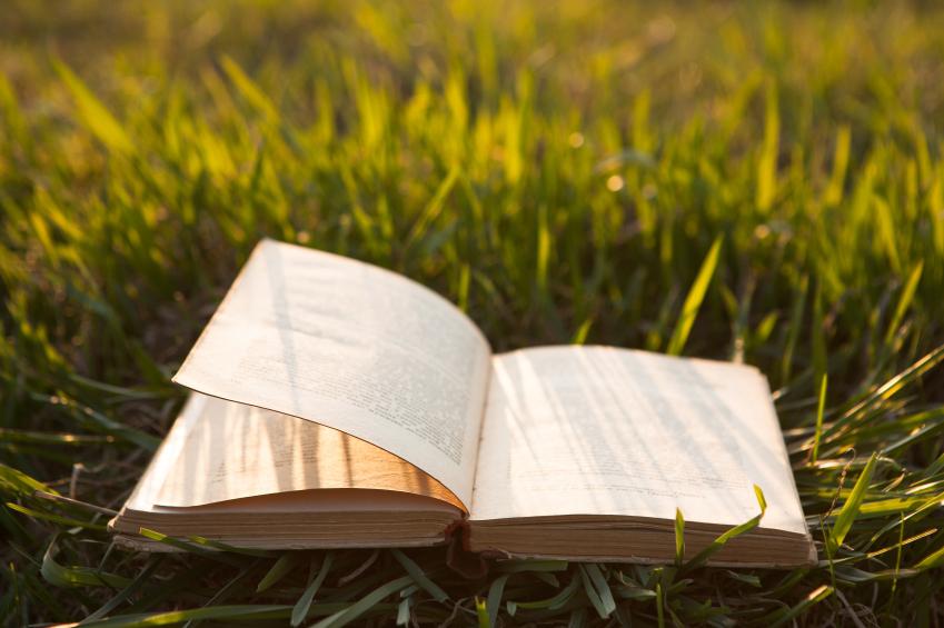 Stanford Humanities Professors Share Summer Reading Picks