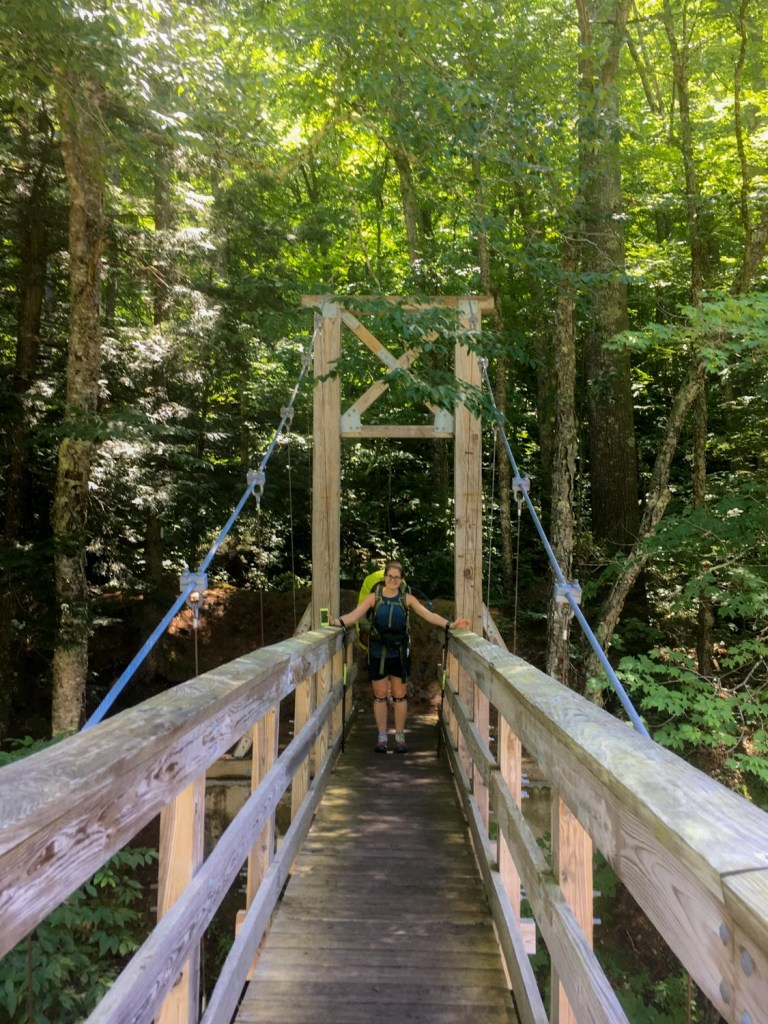 A hiker poses on a wooden bridge.