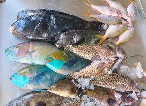 Fish Market Rawai