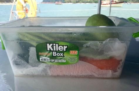 Condensate in the veggie box