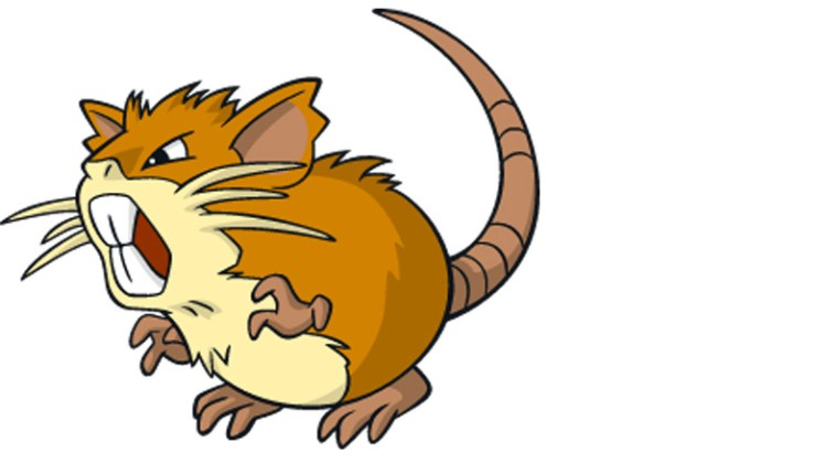 1-raticate