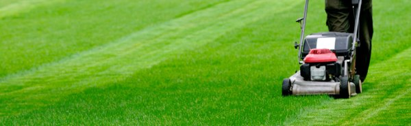 lawn mowing services in columbus