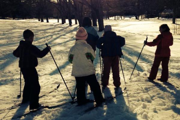 Winter Light - Children cross-country ski