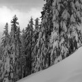 Breaking trail in the Oregon back country. December, 2016