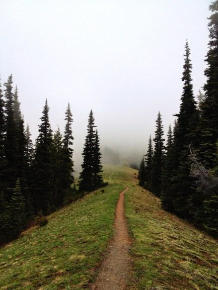Ridgescapes Amidst Cloudscapes