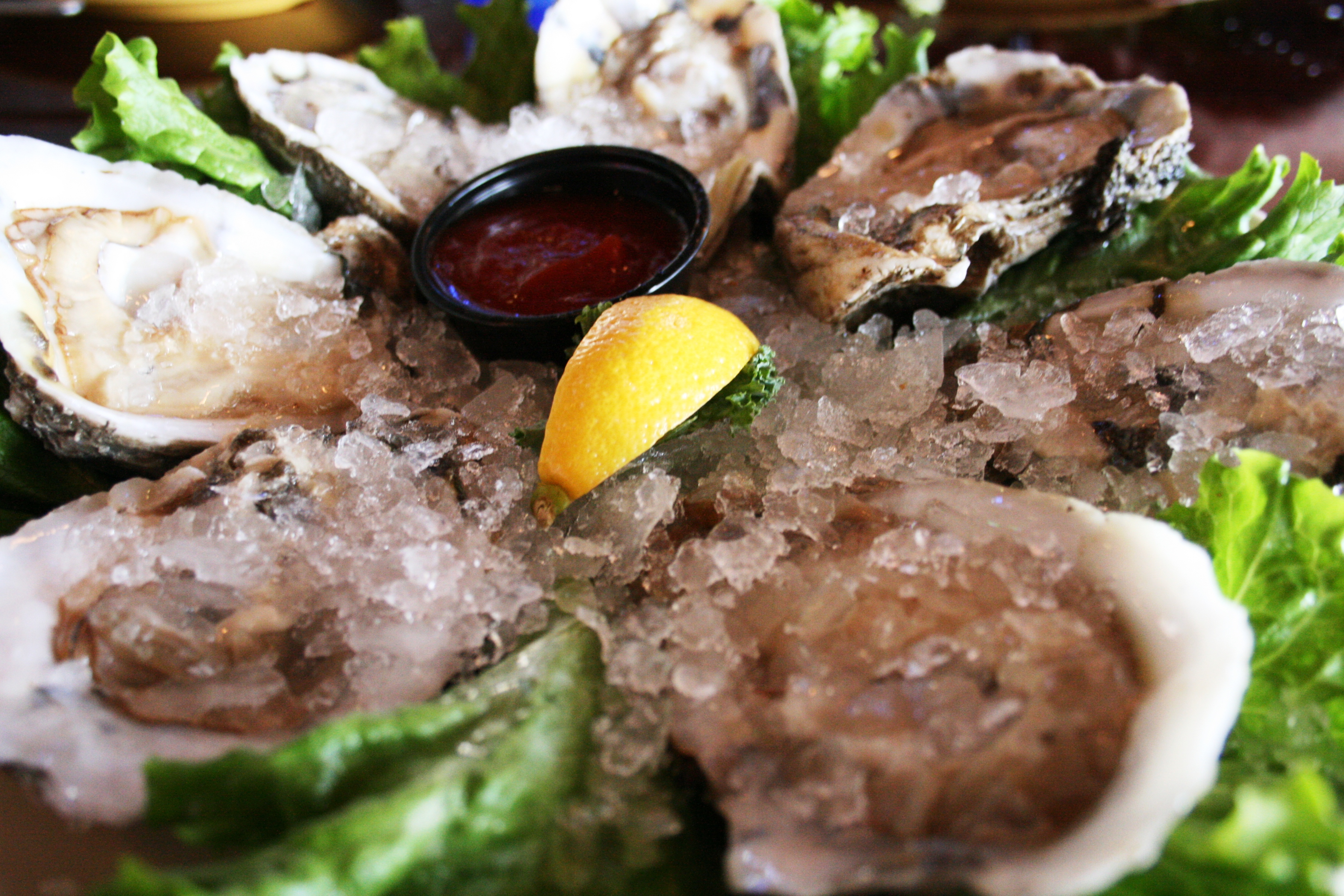 caseys-oysters