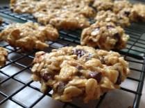 Chocolate Chip & Yogurt Oatmeal Cookies
