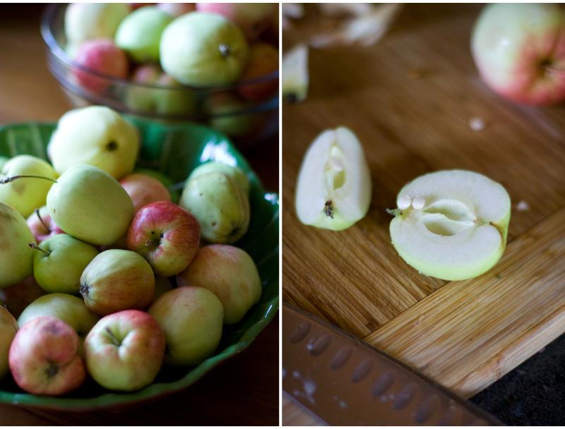 Applesauce6