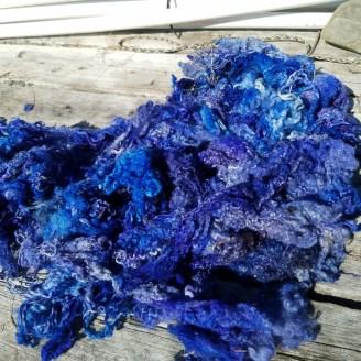 bluebfl