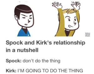 Spock and Kirk in a nutshell - Imgur