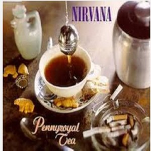 Download nirvana pennyroyal tea rock sheet music pdf