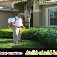شركة مكافحة الحشرات بجدة 0500071979