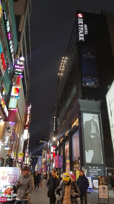 KOREA TRIP GYEONGBOKGUNG PALACE, LOVE LOCKS N SEOUL TOWER, NAMDAEMUN MARKET, MYEONG-DONG (474)