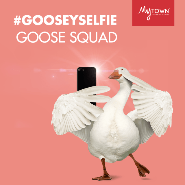 gooseyselfie contest by mytown