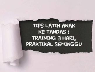 TIPS LATIH ANAK KE TANDAS TRAINING 3 HARI. PRAKTIKAL SEMINGGU