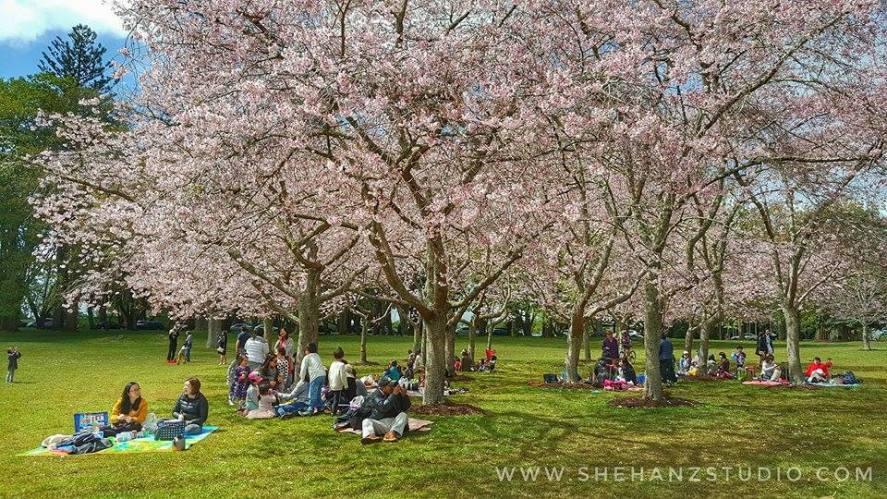KEMBARA #KBBA9 COSMODERM – IKHLAS TOURS KE NEW ZEALAND - WHAKAPAPA SKIFIELD - WESTERN SPRINGS - CORNWALL PARK - ONE TREE HILL (PART 7) (43)