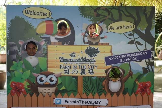 FARM IN THE CITY MALAYSIA, PETTING ZOO TERBAIK UNTUK ANAK-ANAK 6