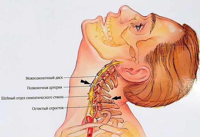 blokkolás a váll gyógyszerében az ízületi gyulladás okai a karokban