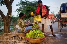 Starfruits and Papaiya