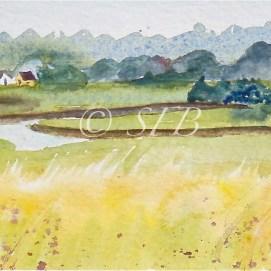 """Essex Marsh, watercolor, 4"""" x 12"""" (Essex, MA)"""