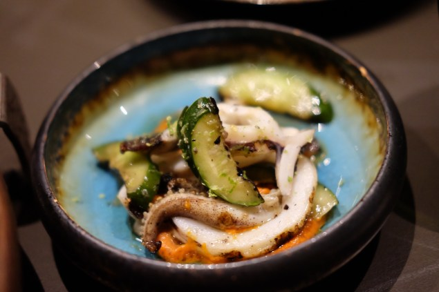 Griiled squid, Japanese cucumber