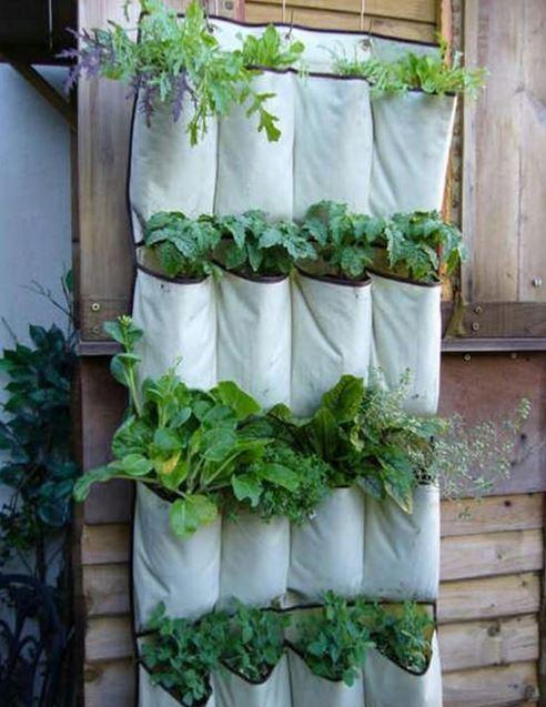 50 Urban Gardening Ideas Healthy Eating