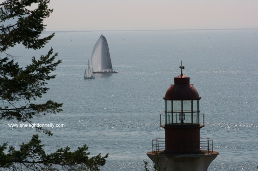 Lighthouse Park 0546 Copyright Shelagh Donnelly
